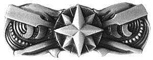 Coxswain Insignia - Coxswain Insignia