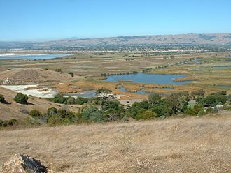 Coyote Hills Regional Park - View across wetlands of the Coyote Hills park from the hills