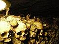 Cranios.jpg