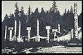 Cumshewa village (S71-3629).jpg