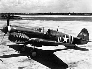 "John C. ""Pappy"" Herbst - Herbst became a flying ace in a P-40N Warhawk painted with shark's teeth."