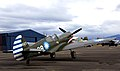 Curtiss P-40 Kittyhawk. (15619182214).jpg