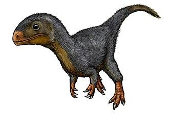 Daemonosaurus - Restoration