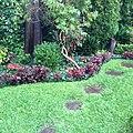 Daniel Pavon Cuellar Gardens.jpg