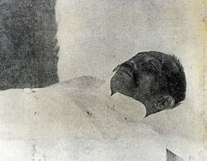 Miguel Malvar - Death of Malvar in 1911.