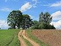 Degučių sen., Lithuania - panoramio (121).jpg