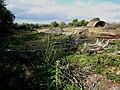 Derelict site near Adfa - geograph.org.uk - 561007.jpg