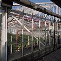 Detail glasopstand met buizen - Aalsmeer - 20404715 - RCE.jpg