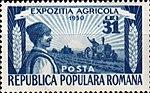 Dimitrie Stiubei - Expozitia Agricola.jpg