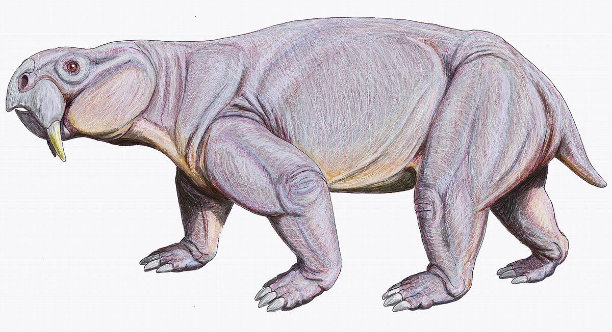 Dinodontosaurus1DB.jpg