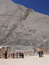 Dinosaur tracks in Bolivia 2.jpg