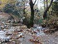 Dirfi river.JPG