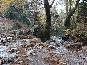 Dirfi - Image: Dirfi river