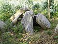 Dolmen Pedra da lebre.jpg