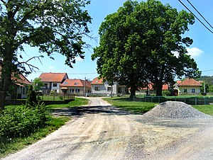 Střemchoví - Střemchoví, the common