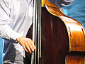 Double Bass (photo by Garry Knight).jpg