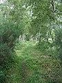 Down-line old Deeside railway - geograph.org.uk - 874597.jpg