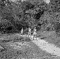 Drie jongens op het Cordonpad op het terrein van de voormalige Jodensavanna, Bestanddeelnr 252-6461.jpg