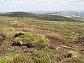 Dried-up peat bog - geograph.org.uk - 208754.jpg