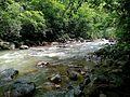 Dugarwadi Waterfall & Forest Beauty.jpg