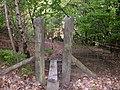 Dun Wood, Shaw - geograph.org.uk - 174438.jpg