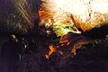 ES-lanza-cueva-v-04.jpg