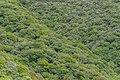Eastern side of Mount Taranaki 05.jpg