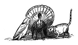 Edward Lear The Owl and the Pussy Cat 3.jpg