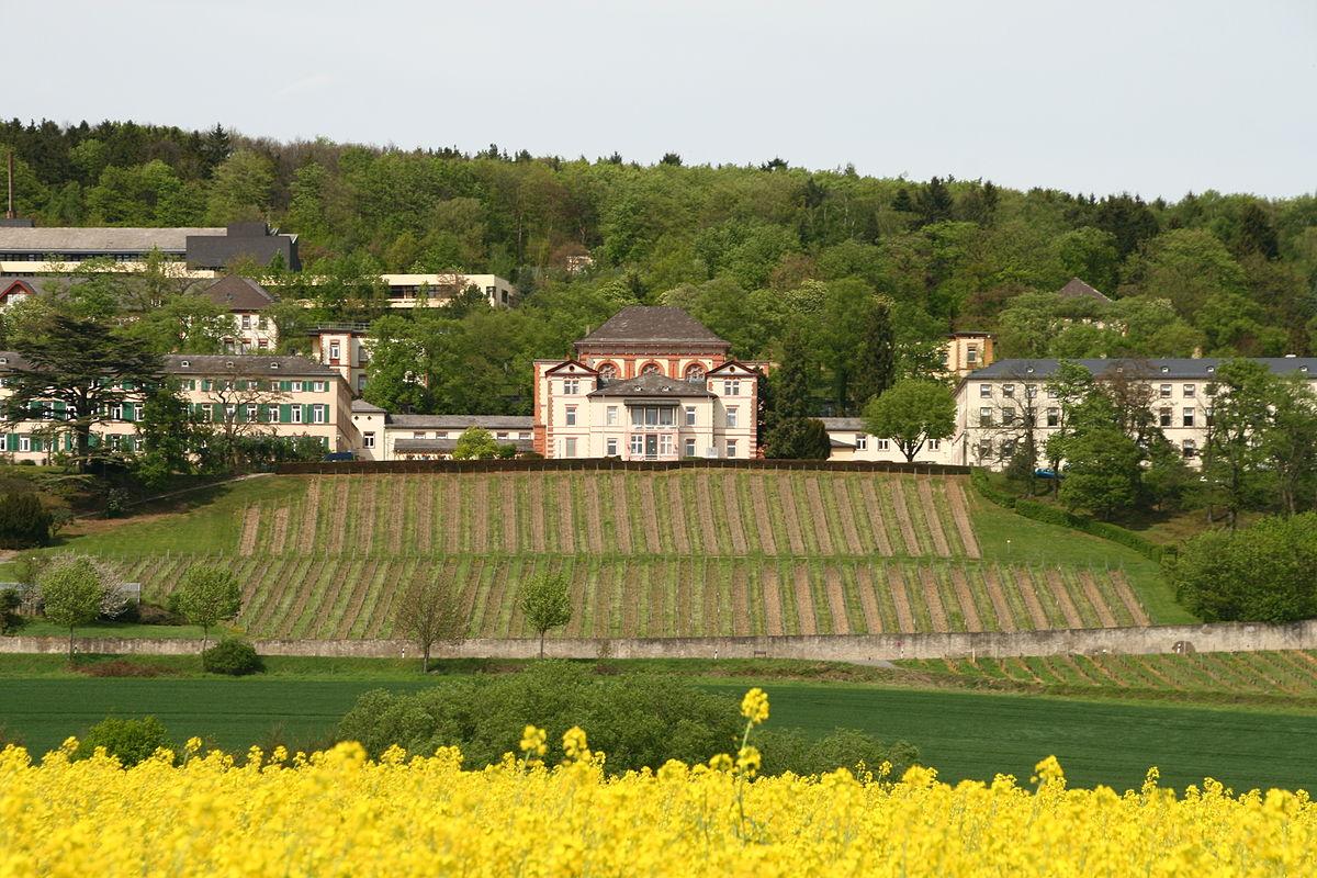 Vitos Rheingau – Wikipedia