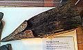 Eiken paalpunt met ijzerbeslag, afkomstig van eerste pallissadenomwalling Valkenburg, Museum Het Land van Valkenburg, Limburg2.jpg