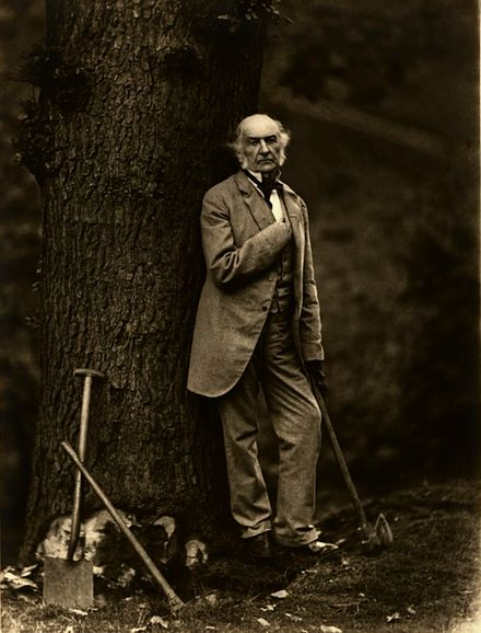 Prime Minister William Ewart Gladstone cultivated the public image as a man of the people by circulating pictures like this of himself cutting down oak trees with an axe. Photo by Elliott & Fry Elliott & Fry10a.jpg