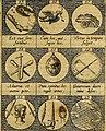 Emblemata sive symbola a principibus, viris eeclesiasticis (sic) ac militaribus aliisque vsurpanda. Deuises ou emblemes pour princes, gens d'Eglise, gens de guerre, and aultres (1624) (14560726469).jpg