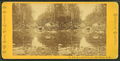 Emerald Pool, near Glen House, N.H, by Pease, N. W. (Nathan W.), 1836-1918 5.png