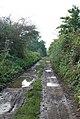 End of Throop Road - geograph.org.uk - 577952.jpg