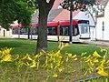 Erfurt - Tramschleife (Tram Loop) - geo.hlipp.de - 40025.jpg