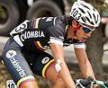 Esteban Chaves 2012.jpg