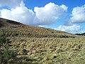 Exmoor , Moorland - geograph.org.uk - 1136453.jpg
