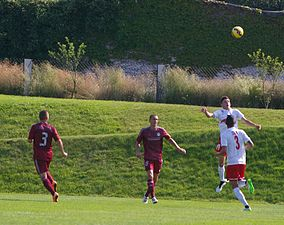 FC Liefering gegen ZP Sport Podbrezova 34.JPG