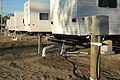 FEMA - 18340 - Photograph by Mark Wolfe taken on 11-02-2005 in Mississippi.jpg