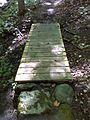FLT CT07 3.0 mi - Puncheon, 8' long with rock ramps, same construction as preceding - panoramio.jpg