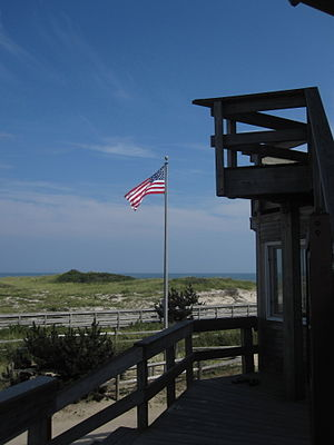Otis Pike Fire Island High Dune Wilderness - Image: F I W Flag
