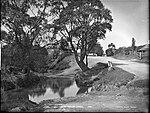 Fairy Meadow Creek (4903843690).jpg