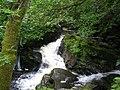 Falls By Balquhidder Church - geograph.org.uk - 573362.jpg