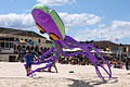 Festival Of The Winds, Bondi Beach, Sydney, Australia.jpg
