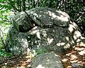 Fist resembling rock at Vitosha mountain - panoramio.jpg