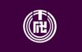 Flag of Chiyogawa Ibaraki.png