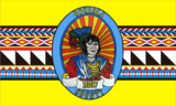 Flag of Osceola County, Florida.png