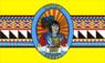 Flag of Osceola County, Florida.png