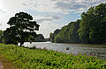 Flickr - Duncan~ - The Thames near Eel Pie Island.jpg