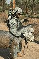 Flickr - The U.S. Army - Rescue.jpg